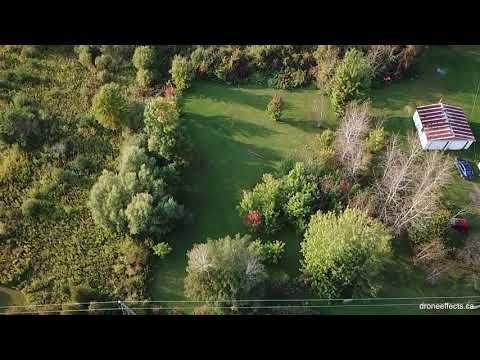 Rideau Auctions Real Estate - Brinston