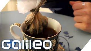So wurde der deutsche Teebeutel zum Exportschlager   Galileo   ProSieben