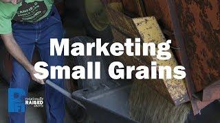 Marketing Small Grains
