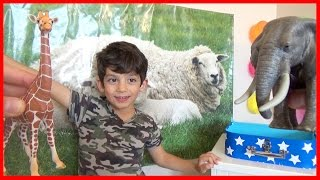Animals Names and Sounds for Children Kids Education