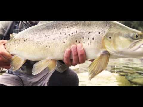 RISE Fly Fishing Film Festival Slovenia 2016 Teaser │ April 8th, Ljubljana, Slovenia