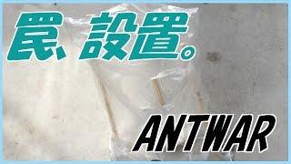 蟻戦争#11 新入り君とヤマアリさんの関係編~between newcomer and japanese ant~