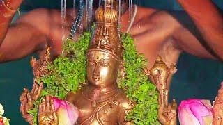 காண கிடைக்காத அற்புத தரிசனம் பாருங்க ! Veera Narasimha Perumal #perumaltemplelive #perumalabhishekam