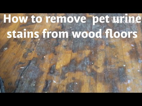 HOW TO REMOVE PET URINE/WATER DAMAGE STAINS FROM WOOD FLOORS