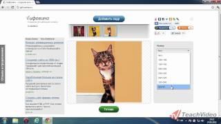 Как создать gif анимацию(В данном видеоуроке мы расскажем вам, как лекго создавать анимированные GIF-изображения. http://youtube.com/teachvideo..., 2012-07-22T20:00:10.000Z)