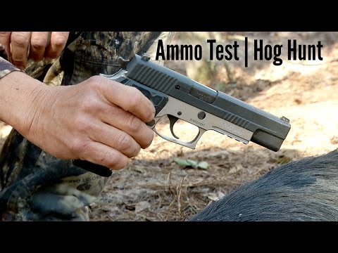 Ammo Test | Handgun Hog Hunt