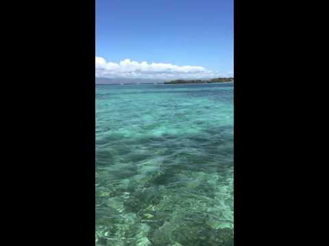 A Good Place for Open Water Snorkeling: Gilutongan Island, Cebu, Philippines