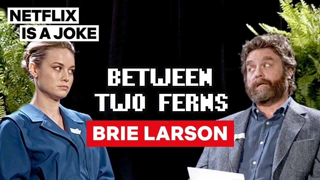 Download Brie Larson: Between Two Ferns with Zach Galifianakis | Netflix Is A Joke