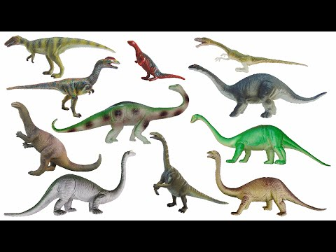 Triassic Dinosaurs - Plateosaurus, Camelotia & More - The Kids