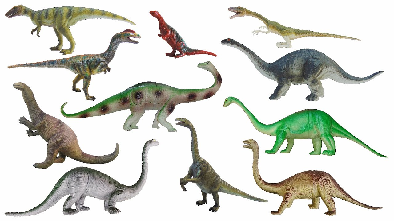 Triassic Dinosaurs Plateosaurus Camelotia & More The Kids