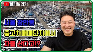 서울중고차 매매단지 장…
