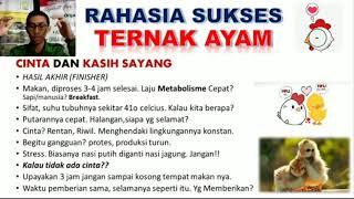 Download Sukses Budidaya Ayam Potong