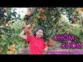 Vườn Chôm Chôm Có Trái Sớm Nhất Mùa | Hưng Lộc - Đồng Nai