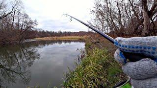 ЩУКИ КЛЮЮТ ТОЛЬКО ЗАКИНЬ! Ловля щуки на закоряженной реке осенью на спиннинг.