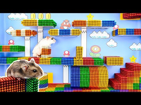 DIY - Build Amazing Super Mario Hamster Maze With Magnetic Balls (Satisfying) - Magnet Balls