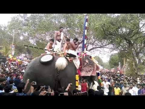 Chirakkal Kalidasan Vs Thrikkadavoor Shivaraju Vs Karithikeyan Vs Pampadi Rajan