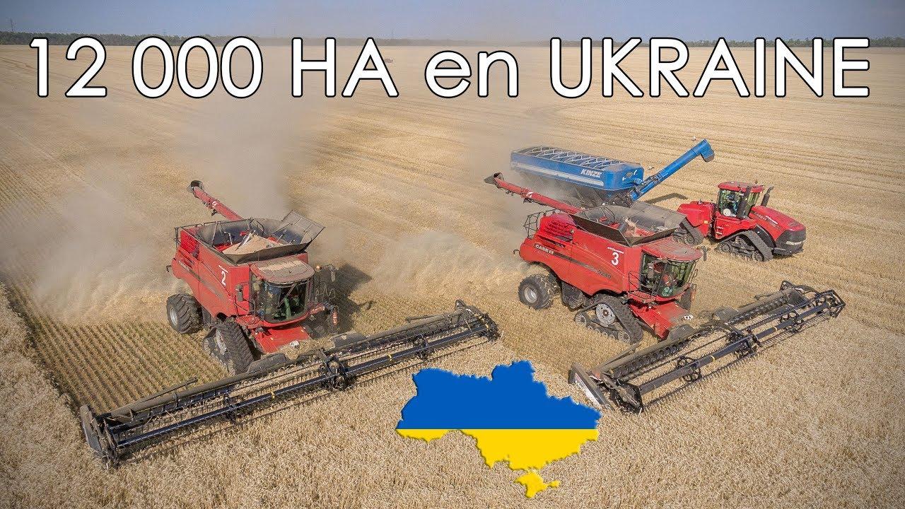 Résultats de recherche d'images pour «Reportage chez Agro KMR en Ukraine»