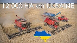 🇺🇦 MOISSON XXL en UKRAINE sur 12 000 ha chez AGRO KMR | CTF 😲