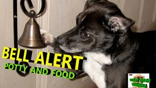 How to teach Your Dog Ring Bell Training in hindi