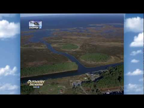 JANE'S ISLAND STATE PARK HELICOPTER TOUR