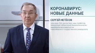 Коронавирус: Новые данные. Лекция Сергея Нетёсова