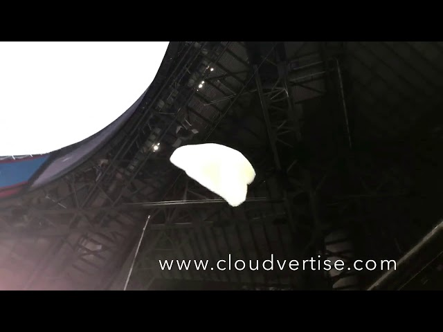Flying Bubloon™ Logos NFL Falcons - CLOUDVERTISE® Bubloons