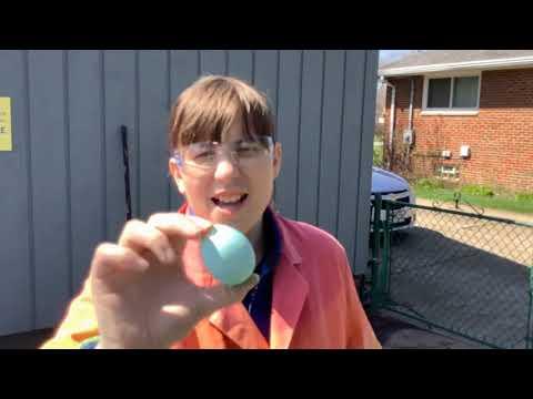 Curiosity Corner LIVE Episode 27 Recap: Eggsperiment