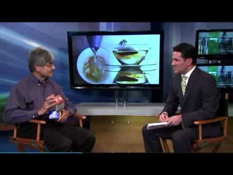 Dr. Dhaval Dhru discusses the benefits of herbal teas.