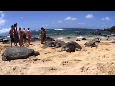 Maui Holiday 2015
