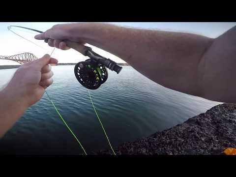 Fly Fishing For Mackerel In Scotland