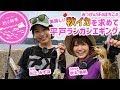 【釣り時季】みっぴ&SFAほちこの美味しい秋イカを求めて~平戸ランガンエギング