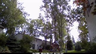 Maple Tree Removal Livonia, Michigan