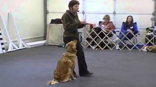 Competition Obedience Teaching Front Position With Janice Gunn