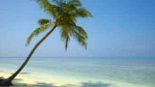 Slideshow: The Bahamas - Paradise Island - Atlantis