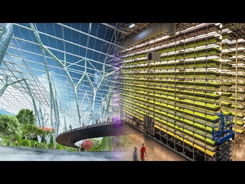 China Innovation! The Most Advanced Indoor Farming In China