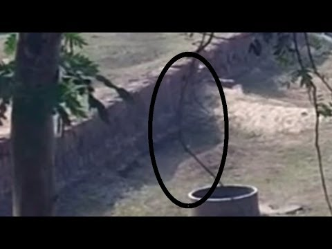 Real Ghost Video In India Ghost Videos 2018 Real Ghost Caught On