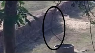real ghost caught on camera jumping in well ghost jump in well