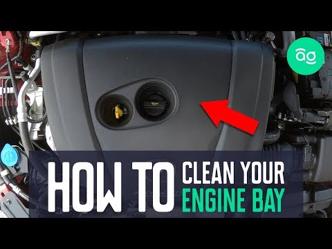 How to Clean Your Engine Bay like a Pro with Joel | AutoGuru.com.au