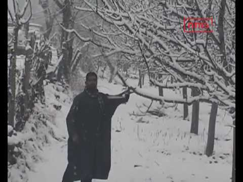 Snowy Days In Kashmir Valley Add To Winter Chill