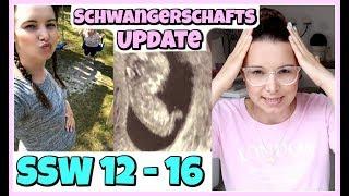 Schwangerschaftsupdate 12. - 16. SSW | ABNEIGUNG | körperliche VERÄNDERUNGEN | Gelüste
