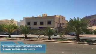 Исламский Университет города Медина  (номер для поступления ватс апп +966 591 421 235 )
