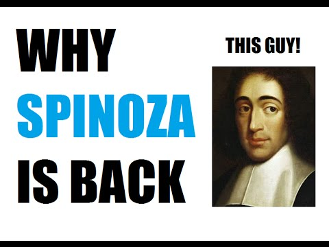 notes on spinoza s ethics Many of spinoza's propositions throughout the ethics fall into groups with some close relationship to each other and so, as a possible aid to understanding his meaning and the direction of his thought, it might be useful to consider an outline of his work.