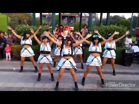 JOD48 - First Rabbit - AKB48