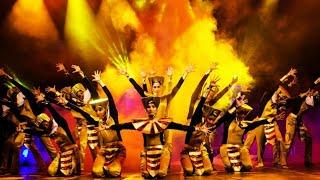 Baixar Annual Function Dance Sai Shree International Academy Ratlam