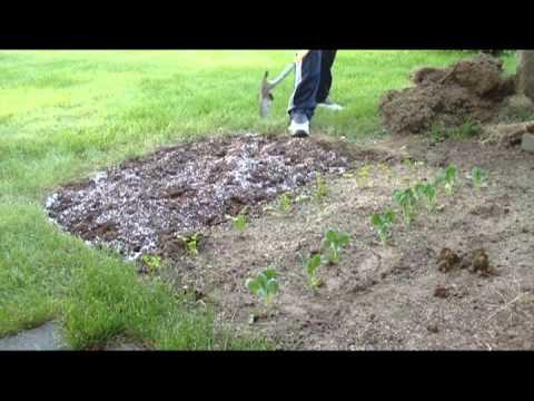 Grass to Garden in under 5 minutes