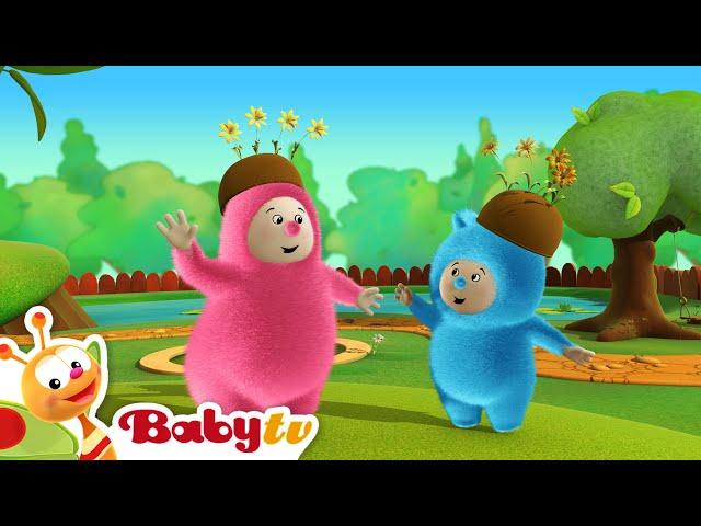 Billy Bam Bam | Recogen naranjas | BabyTV (Español)