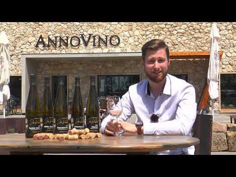 Představení značky Mladý Enolog Jan Koubek z vinařství ANNOVINO Lednice