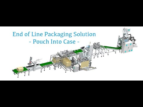 Case Packing End Of Line Packaging Solution