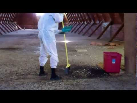 Bat Guano for compost pile