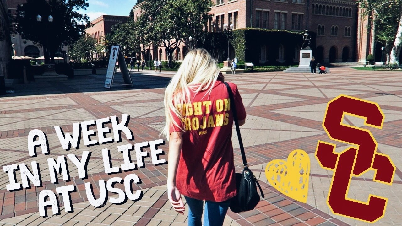 my college life The latest tweets from college life (@collegedotlife) daily college content | do not own any content posted | contact: info@collegelife.